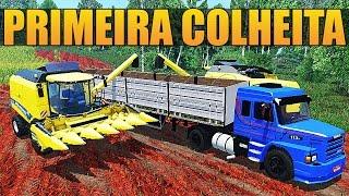 Farming Simulator 2015 - Primeira Colheita | Sítio Gralha Azul