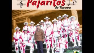 getlinkyoutube.com-Super banda los pajaritos de tacupa mix