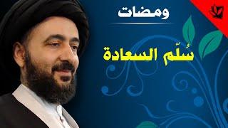 getlinkyoutube.com-ومضات - سلّم السعادة - سماحة اية الله الفقيه السيد محمد رضا الشيرازي