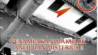 "getlinkyoutube.com-VIDEO PENAMPAKAN MAKHLUK ANEH ""BERLARI DIATAS RUMAH WARGA"" PENAMPAKAN MAKHLUK MISTERIUS DI DUNIA !!"
