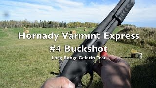 getlinkyoutube.com-Long Range Shotgun Test! 12 Gauge #4 Buck - Hornady Varmint Express