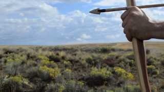 getlinkyoutube.com-Making a Primitive Yew Bow for primitive archery hunting using stone tools. Otzi the Iceman bow.