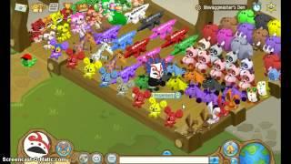 getlinkyoutube.com-How to get alot of Plushies- Animal Jam