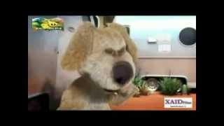 getlinkyoutube.com-KASHMIRI COMEDY/JOKE'S ASILI PAP