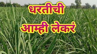 इ.4 थी मराठी धरतीची आम्ही लेकरं std. 4th Marathi Poem Dhartichi Aamhi Lekra jjharale Educational