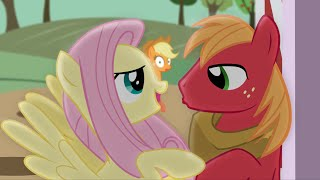 Top 10 Ships In My Little Pony!