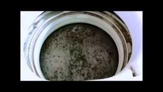 getlinkyoutube.com-酸素系漂白剤(洗濯用)で5年使った洗濯槽を掃除!