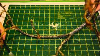 getlinkyoutube.com-Decorar rama de árbol