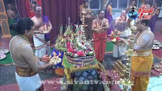 சூரிச் அருள்மிகு சிவன் கோவில் 6ம் திருவிழா பகல் 20.06.2018