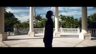 Fuse Odg ft. Sean Paul- Dangerous Love