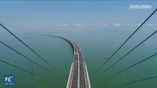 World's longest sea bridge! Hong Kong-Zhuhai-Macao Bridge to boost logistics