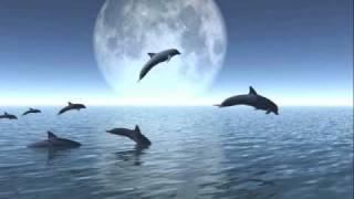 getlinkyoutube.com-Song for Peace KITARO