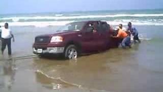 getlinkyoutube.com-Rescatando Lobo en Tuxpan