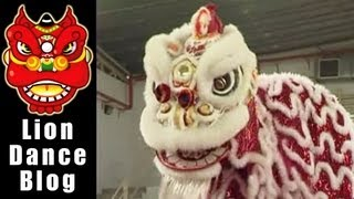 getlinkyoutube.com-2008 Lion Dance Competition -  Nipah Dongheng Mingtang Long Division