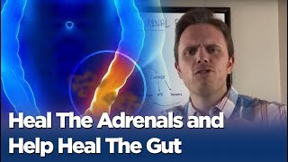 getlinkyoutube.com-Leaky Gut and Adrenal Fatigue - Heal The Adrenals and Help Heal The Gut