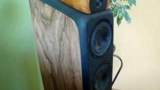getlinkyoutube.com-DIY loudspeakers TVM & Visaton