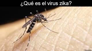 getlinkyoutube.com-¿Qué es el virus zika?