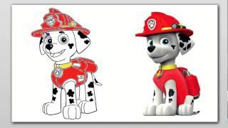 getlinkyoutube.com-juego de colorear a Marshall de  la patrulla canina