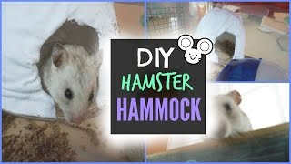 getlinkyoutube.com-DIY Hamster Hammock/ Hanging House