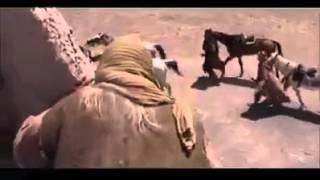 getlinkyoutube.com-الإمام علي عليه السلام فتح  بئر  في فلم  النبراس