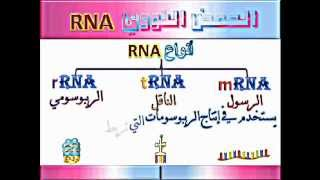 getlinkyoutube.com-مادة الوراثة ... أ.فاروق المصري