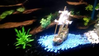 getlinkyoutube.com-Home made underwater waterfall (sand fall).