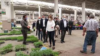 Vali Becel ve Başkan Savran, Nevşehir Pazaryerlerini Denetledi