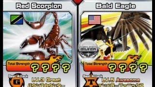 getlinkyoutube.com-Animal Kaiser Red Scorpion vs Bald Eagle