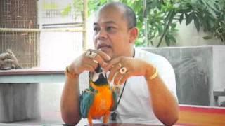 getlinkyoutube.com-pet_02072011_Part_2.flv