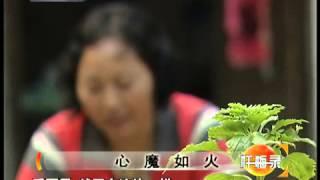 getlinkyoutube.com-忏悔录 心魔如火