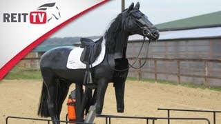 Pferdeunfall: Das Sturzseminar - so fallt ihr richtig vom Pferd