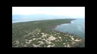 DREFF - Trailer Reserva de la Biosfera: Jaragua, Bahoruco y Enriquillo (Enriquillo)