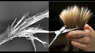 علاج تقصف الشعر - اسأل مجرب - split ends mask