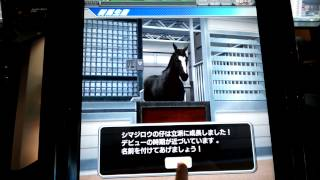 getlinkyoutube.com-スターホース2 FD 新馬作成 ゼロメタル