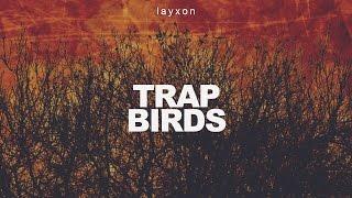 getlinkyoutube.com-21 Savage & Drake Type Beat (2016) - Trap Birds (Prod. Layxon) NEW