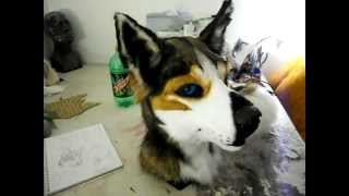 getlinkyoutube.com-Fursuit challenge: Husky