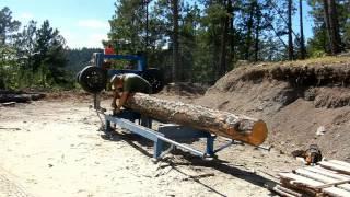 getlinkyoutube.com-Beetle Kill Tree Becomes Lumber
