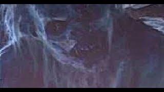 getlinkyoutube.com-Bigfoot: The Curse of Blood Mountain - Official Trailer 2014