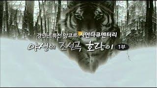 getlinkyoutube.com-EBS 자연 다큐멘터리_야생의 조선곡 호랑이 1부