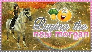 getlinkyoutube.com-Buying the NEW Morgan horse | Star Stable