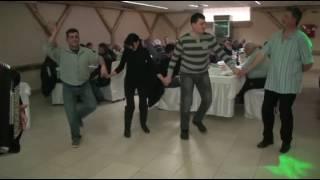 Goluarska zabava Bačkog okruga SRB saveza