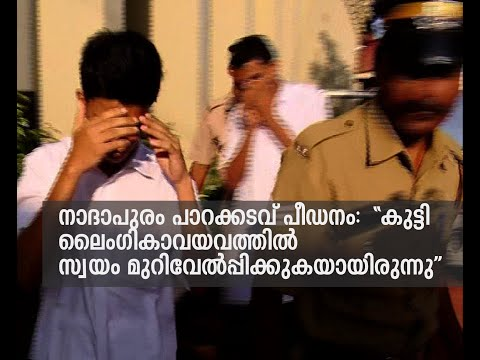 Nadapuram molestation : Girl herself made injury in her private parts | FIR
