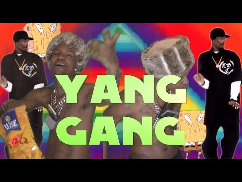 Yang Gang Anthem (Yang 2020) music video by Paperboy Prince of the Suburbs