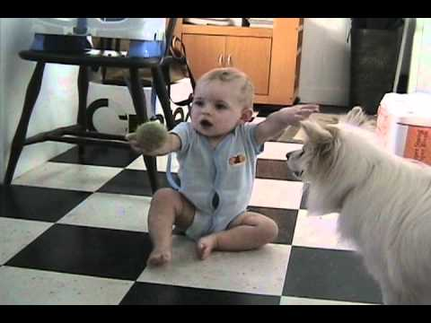 Dog Teaches Baby to Fetch