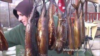 getlinkyoutube.com-Afumarea peștelui: macroul