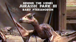 getlinkyoutube.com-JURASSIC PARK III - Baby Pteranodon Puppet Rehearsal