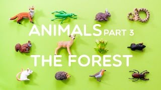 getlinkyoutube.com-Learning Animals Names and Sounds for Kids - Part 3: The Forest
