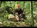 Deer Hunting -NZ Hunting Adventures - Sika Deer