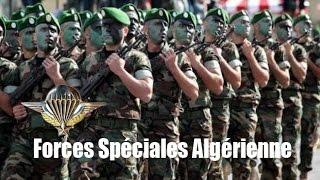 getlinkyoutube.com-Algerian special forces para (RPC) استعراض للقوات الخاصة الجزائرية