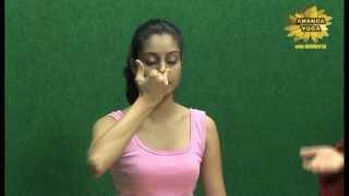 Yoga for Beginners : Pranayamas